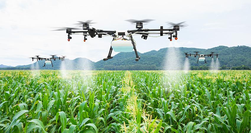 農業分野でドローンを活用している様子