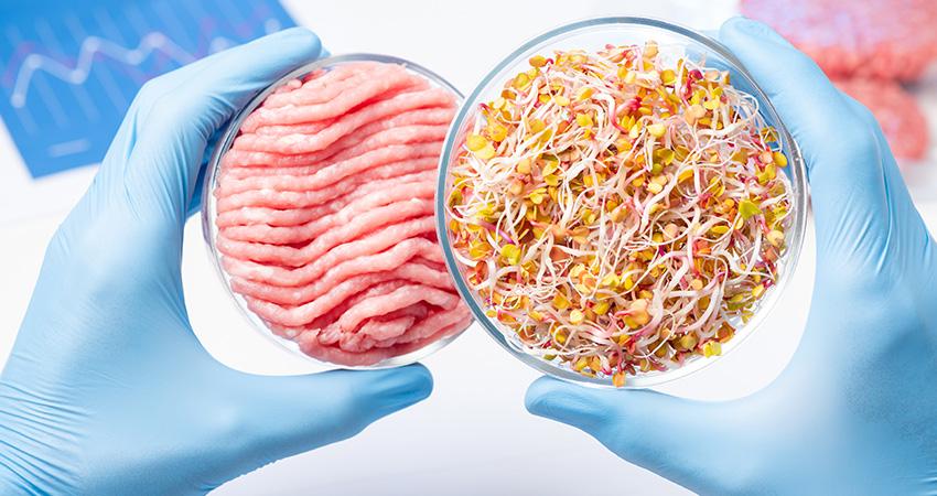 培養肉の開発イメージ